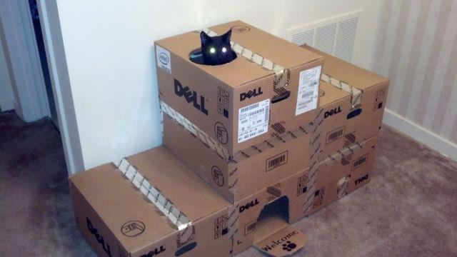 Кошке домик из коробок своими руками 58